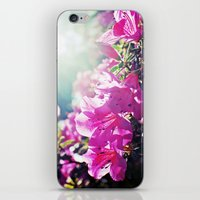 A Flare of Spring iPhone & iPod Skin