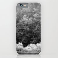 The Forest Keeps Secrets iPhone 6 Slim Case