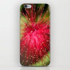 The Pink Tutu iPhone & iPod Skin