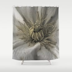 As a Spider Shower Curtain