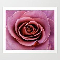 Mauve Rose Art Print