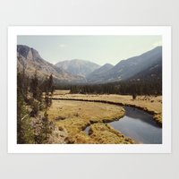 Rocky Mountain Meadow Art Print