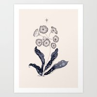 Primrose Art Print