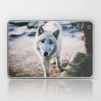 White Wolf Laptop & iPad Skin