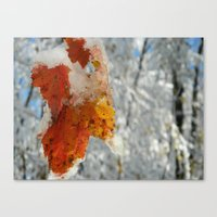 The Last of Autumn 2 Canvas Print