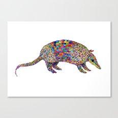 armadillo Canvas Print
