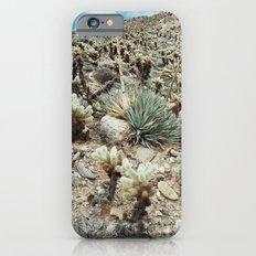 Mountain Cholla iPhone 6 Slim Case