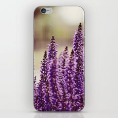 Purplicious iPhone & iPod Skin