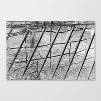 Shades of Fence Canvas Print