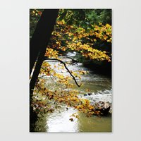 Runs Through It. Canvas Print