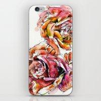 Rose Blooms iPhone & iPod Skin