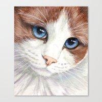 Blue-eyes Cat 868 Canvas Print