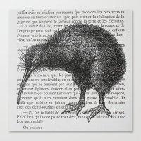 Curious Kiwi Canvas Print