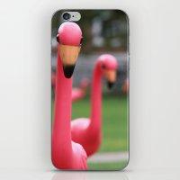 Flamingo iPhone & iPod Skin