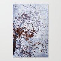 Late November Canvas Print