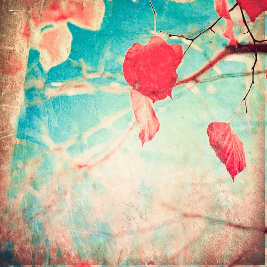 Alone Pink Leaf on blue textured sky, autumn fall, photogfraphy  Art Print