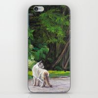 What The Cat Sees By The… iPhone & iPod Skin