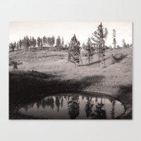Black Hills Canvas Print