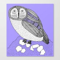 another owl Canvas Print