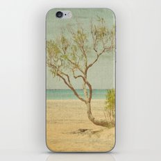 Seclusion iPhone & iPod Skin
