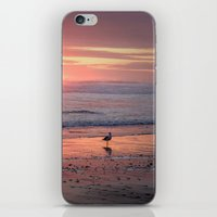 Sunset at Cannon Beach Oregon iPhone & iPod Skin