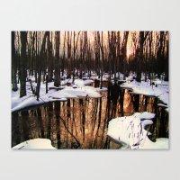 Emerging Pools II Canvas Print