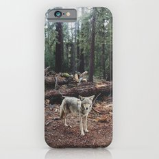 Injured Coyote iPhone 6 Slim Case