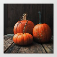 Three Pumpkins Canvas Print