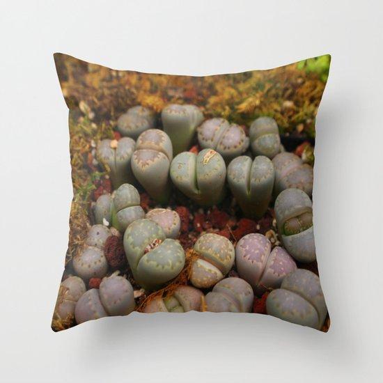 Cactus Stones Throw Pillow