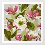 Magnolia Bloom - Daytime… Art Print
