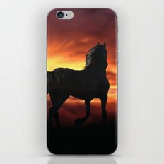 Horse kissed by the wind at sunset iPhone & iPod Skin