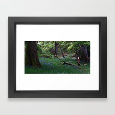 Ashness Wood Framed Art Print