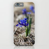 iPhone & iPod Case featuring Mini Iris by Katie Kirkland Photography