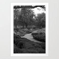 Pathways Art Print