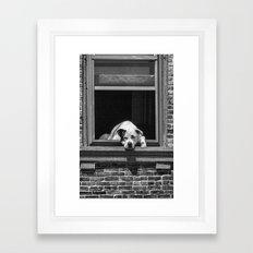 Window Watchdog Framed Art Print