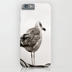 I'm waiting for you Slim Case iPhone 6s