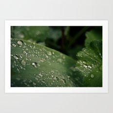 Droplets III Art Print
