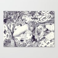 Anteater  Canvas Print