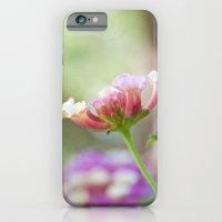 Lantana iPhone 6 Slim Case