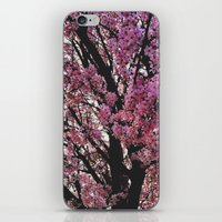 Spring Tree iPhone & iPod Skin