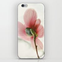 Portraits Of Spring - I iPhone & iPod Skin