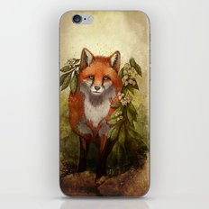 Fox [caming ou of the woods] iPhone & iPod Skin