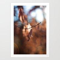 Late Autumn Light III Art Print