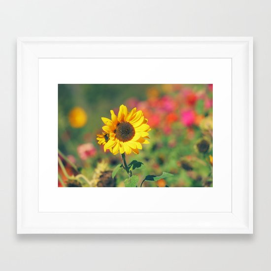 Bursting with Cheer Framed Art Print