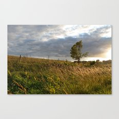 Grow Where You're Planted Canvas Print