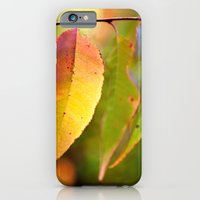 iPhone & iPod Case featuring Chameleon Leaves by Bailey Aro Photography