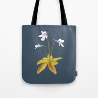 Butterwort - Pinguicula … Tote Bag