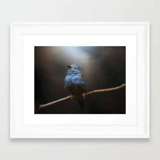Believe! Framed Art Print