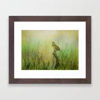 The Meadow Lark Sings Framed Art Print