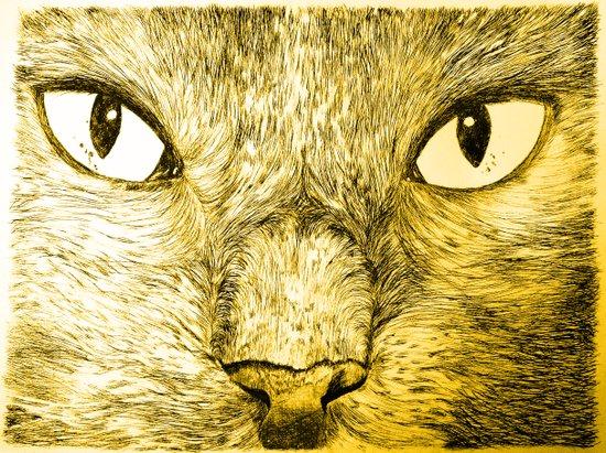 Gary Canvas Print